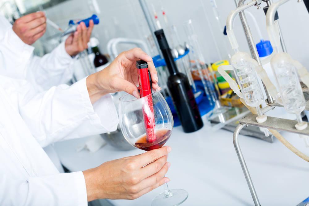 La competencia en el sector vinícola profesionaliza el sector